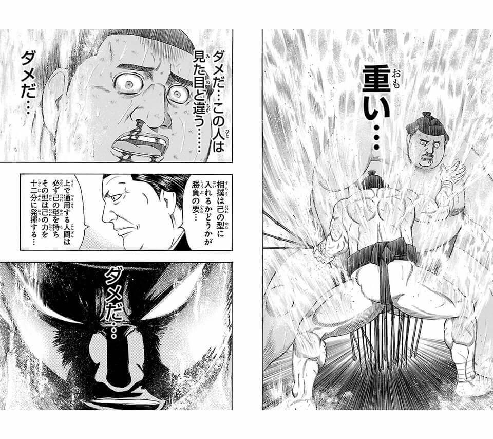 左下手・下手投げが得意の力士:鮫島